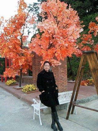 秋天资料照片_北京征婚交友